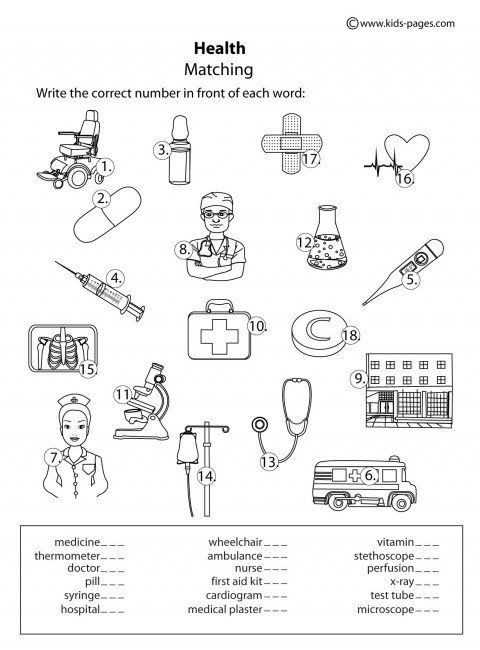 2nd Grade Health Worksheets 2nd Grade Health Worksheets 28 [ Health Worksheet ] In 2020