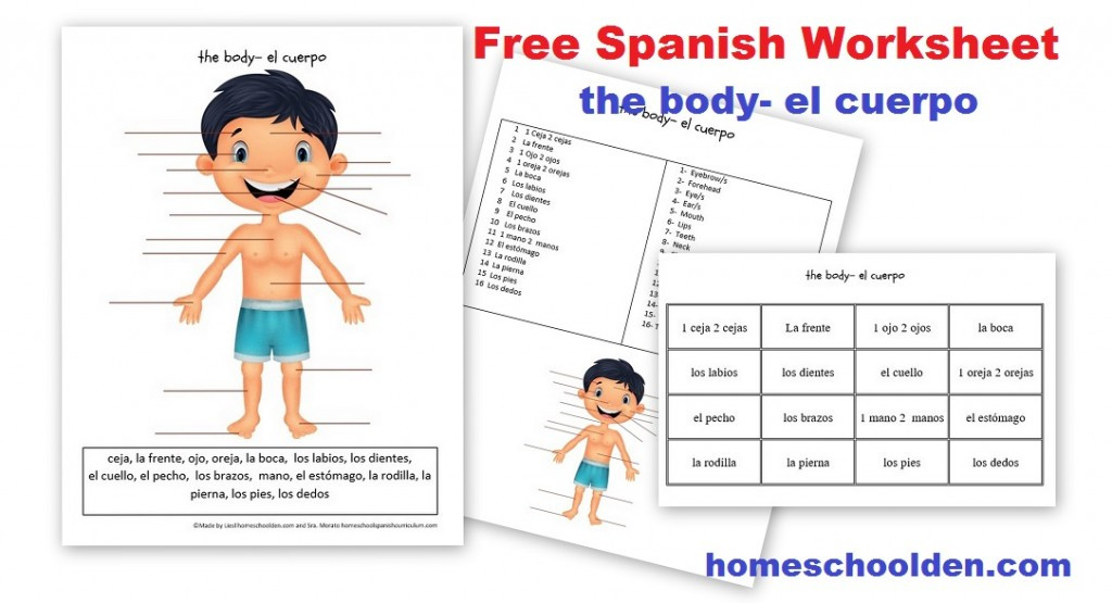 3rd Grade Spanish Worksheets Free Spanish Worksheet Parts Of the Body El Cuerpo