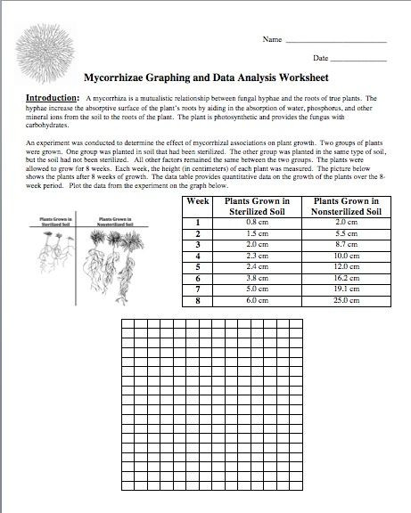 Analyzing Data Worksheet High School Picture to Product Free Graphing and Data