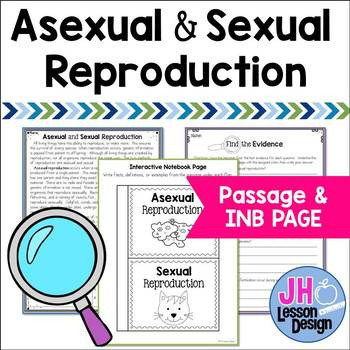 Asexual Reproduction Worksheet High School A Ual and Ual Reproduction Worksheet