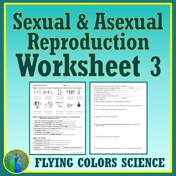 Asexual Reproduction Worksheet High School A Ual Reproduction Worksheet