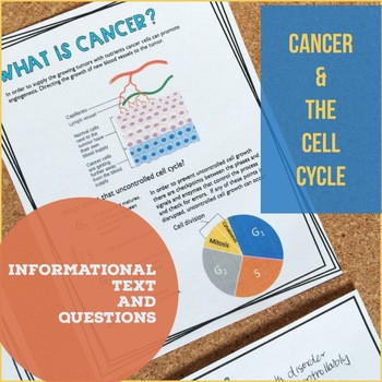 Cancer Worksheet High School Cell Cycle and Cancer Worksheet Packet Digital and Print