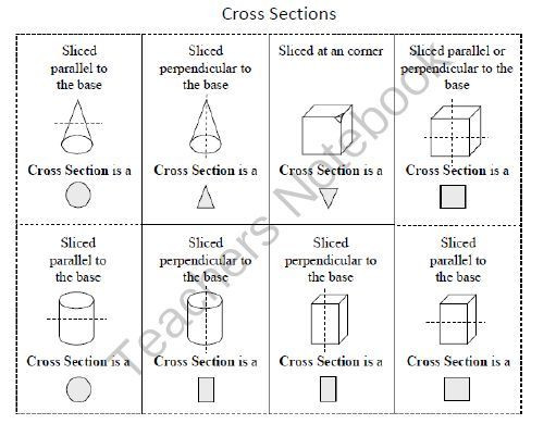 Cross Sections Worksheet 7th Grade Cross Section Reference Ms somy Pinterest