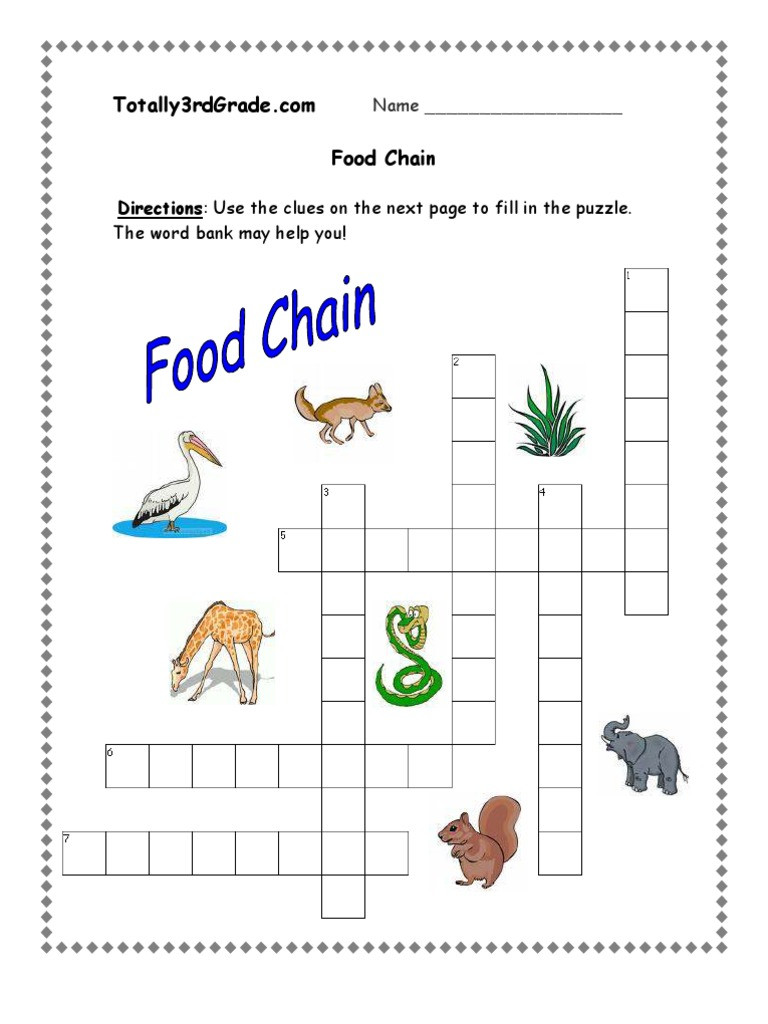 Food Chain Worksheet 4th Grade Food Chain Worksheet