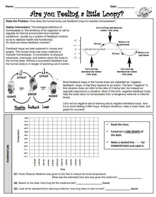 Homeostasis Worksheet High School Homeostasis Amped Up Learning