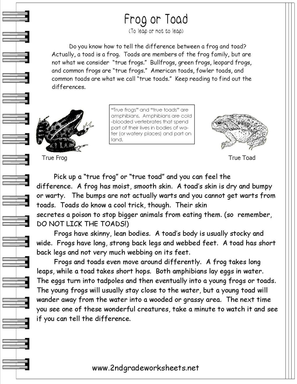 Informational Text Worksheets 8th Grade Worksheet Reading Informational Text Worksheets