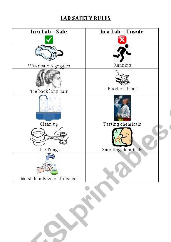 Lab Safety Worksheets High School Laboratory Safety Rules Esl Worksheet by Lcpalombo