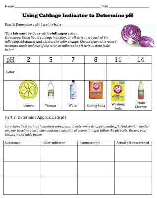 Ph Worksheet High School Free Of Student Worksheet for A Cabbage Ph