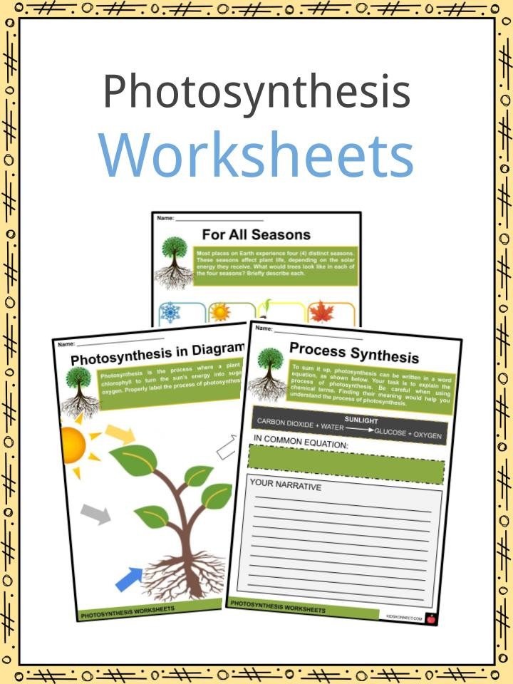 Photosynthesis Diagram Worksheet High School Synthesis Facts Information & Worksheets for Kids