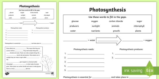 Photosynthesis Diagram Worksheet High School Synthesis Worksheet Pdf Twinkl Teacher Made