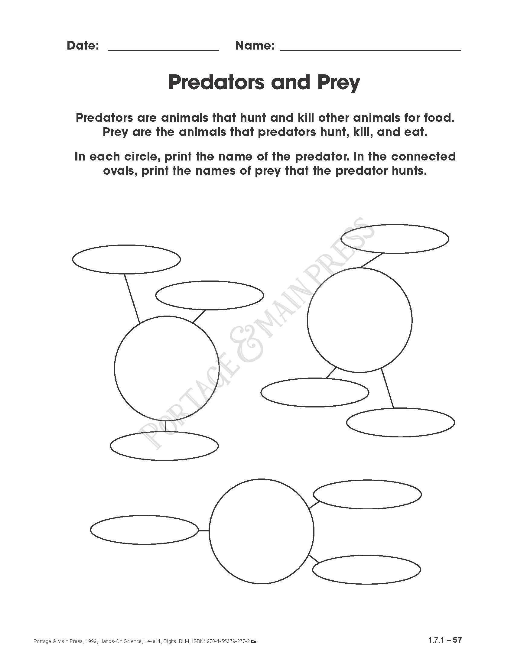 Predator Prey Worksheet High School Portage & Main Press Educational Books for Teachers