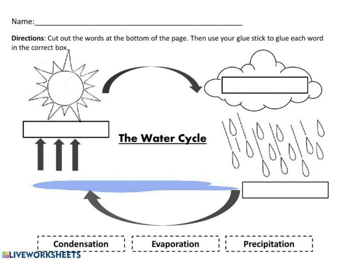 Water Cycle 4th Grade Worksheets Water Cycle and Pdf Worksheet Science Court Worksheets Want