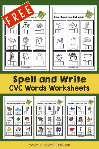 Spell and Write CVc Words Worksheets Free Printable